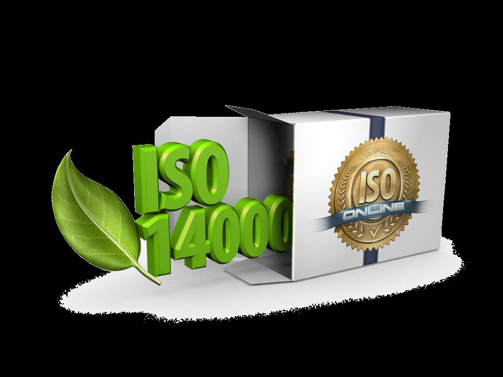 png-iso-14000-mcallen tx